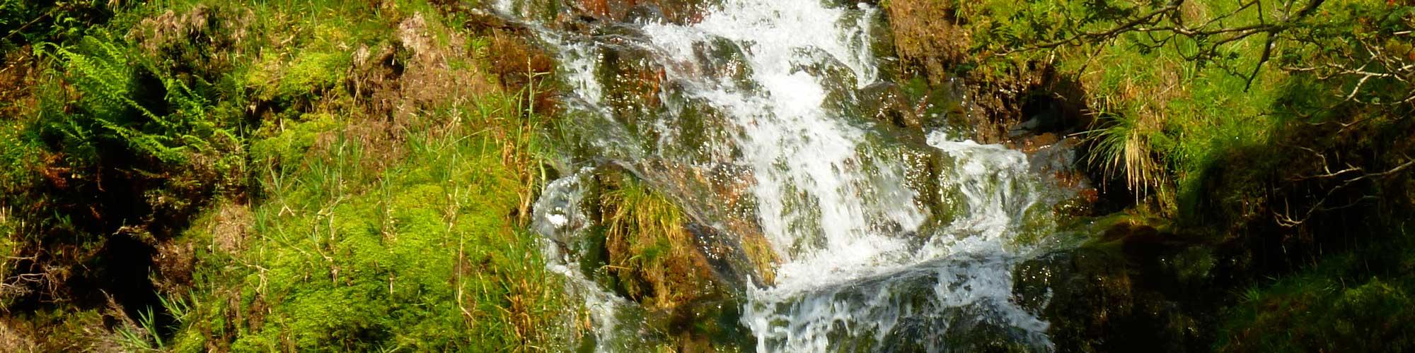 waterfall at poppycottage